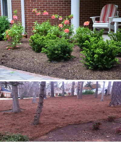 Are You Constantly Fighting Weeds In Your Natural Areas Flowerbeds Greenscapes Shrub Turf Inc Can Take Care Of Them The Professional Way