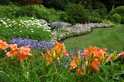 how to kill weeds in flower beds